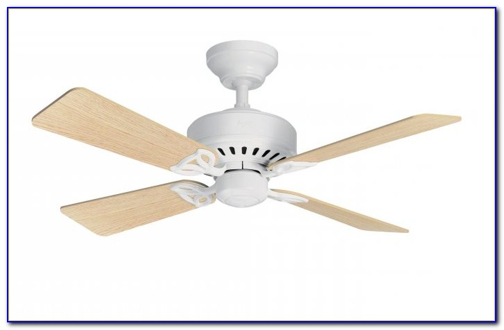 Hunter Ceiling Fans With Lights Uk