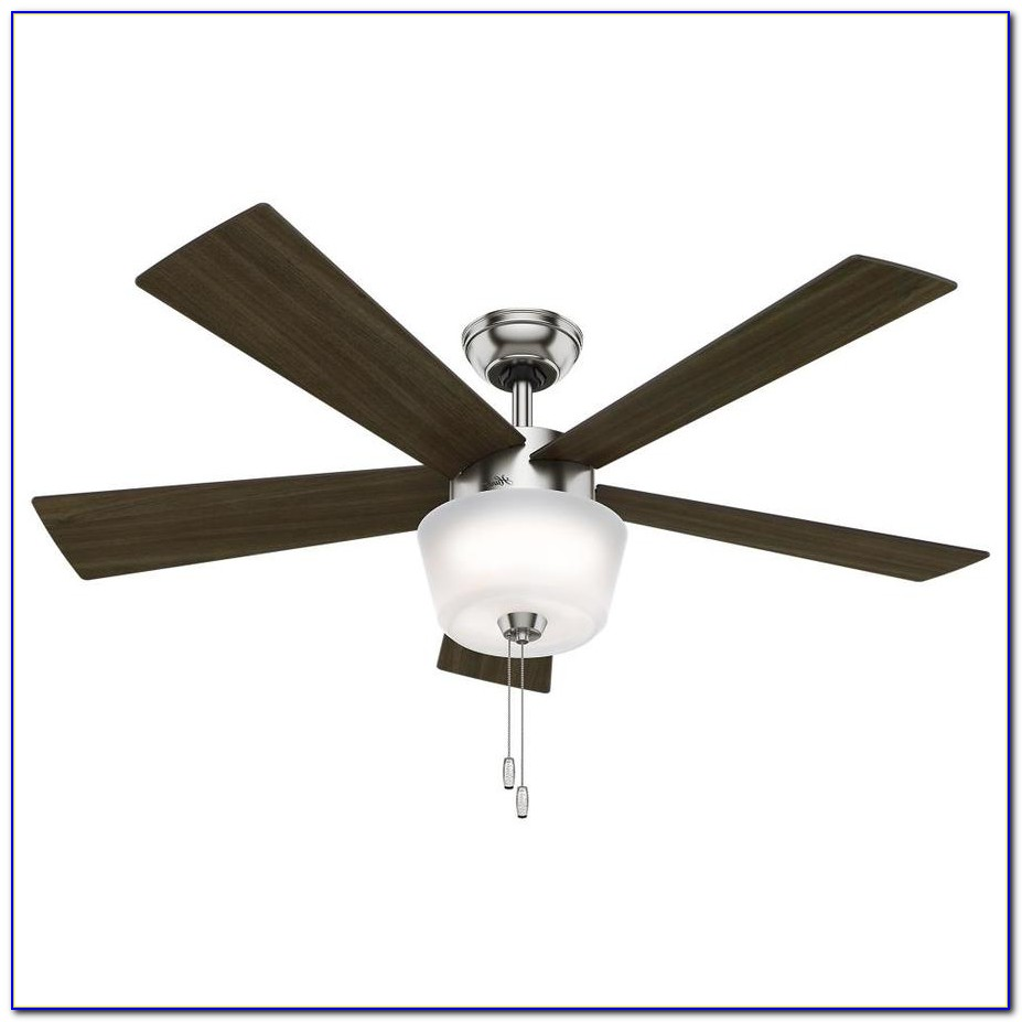 Hunter White Ceiling Fan With Light