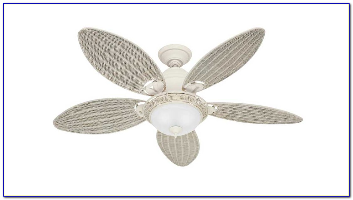 Hunter White Ceiling Fans