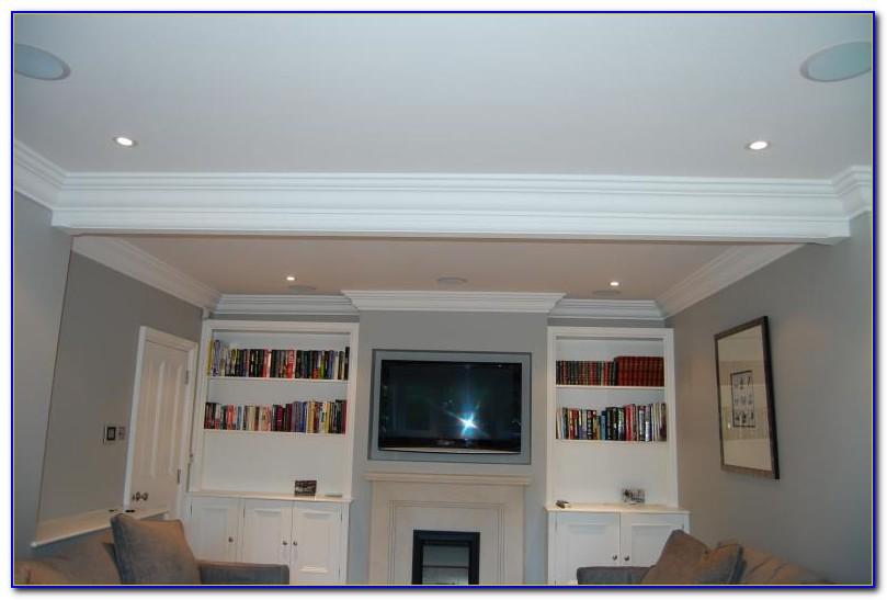 In Ceiling Surround Sound Speaker