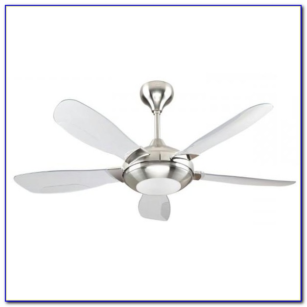 Modern Ceiling Fan With Bright Light