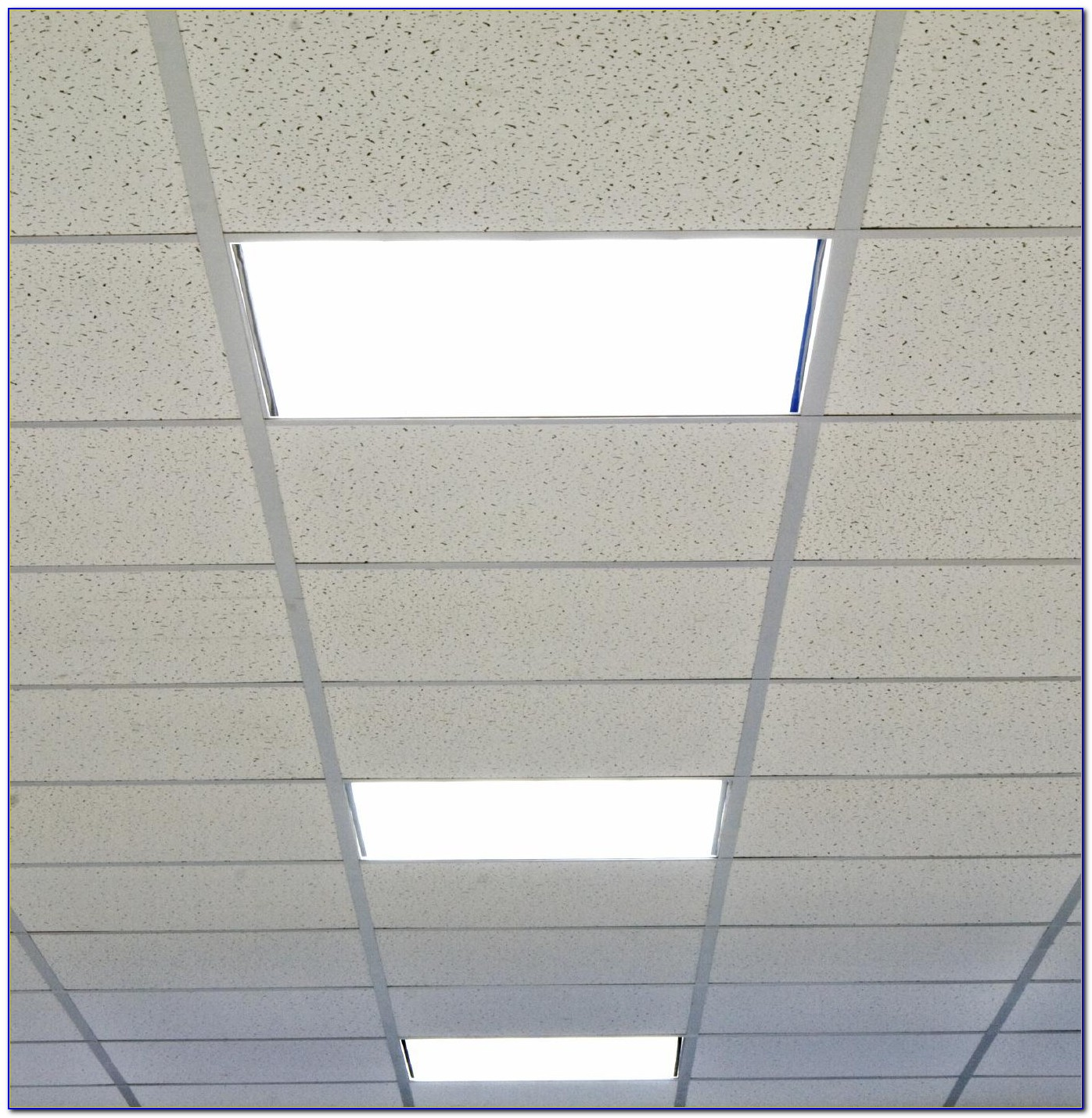 Scenic Drop Ceiling Light Panels