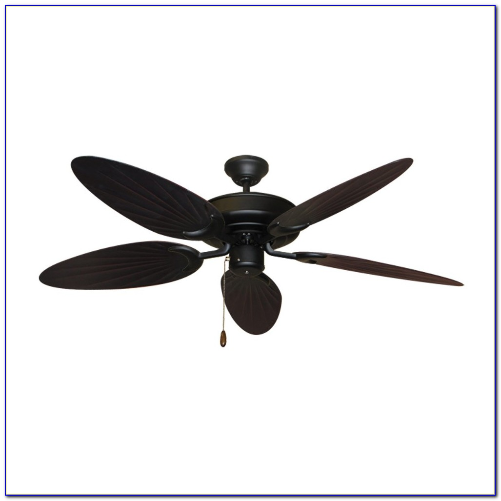 Wet Rated Ceiling Fans Amazon