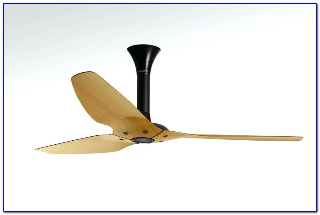 Wooden Blade Ceiling Fan With Light