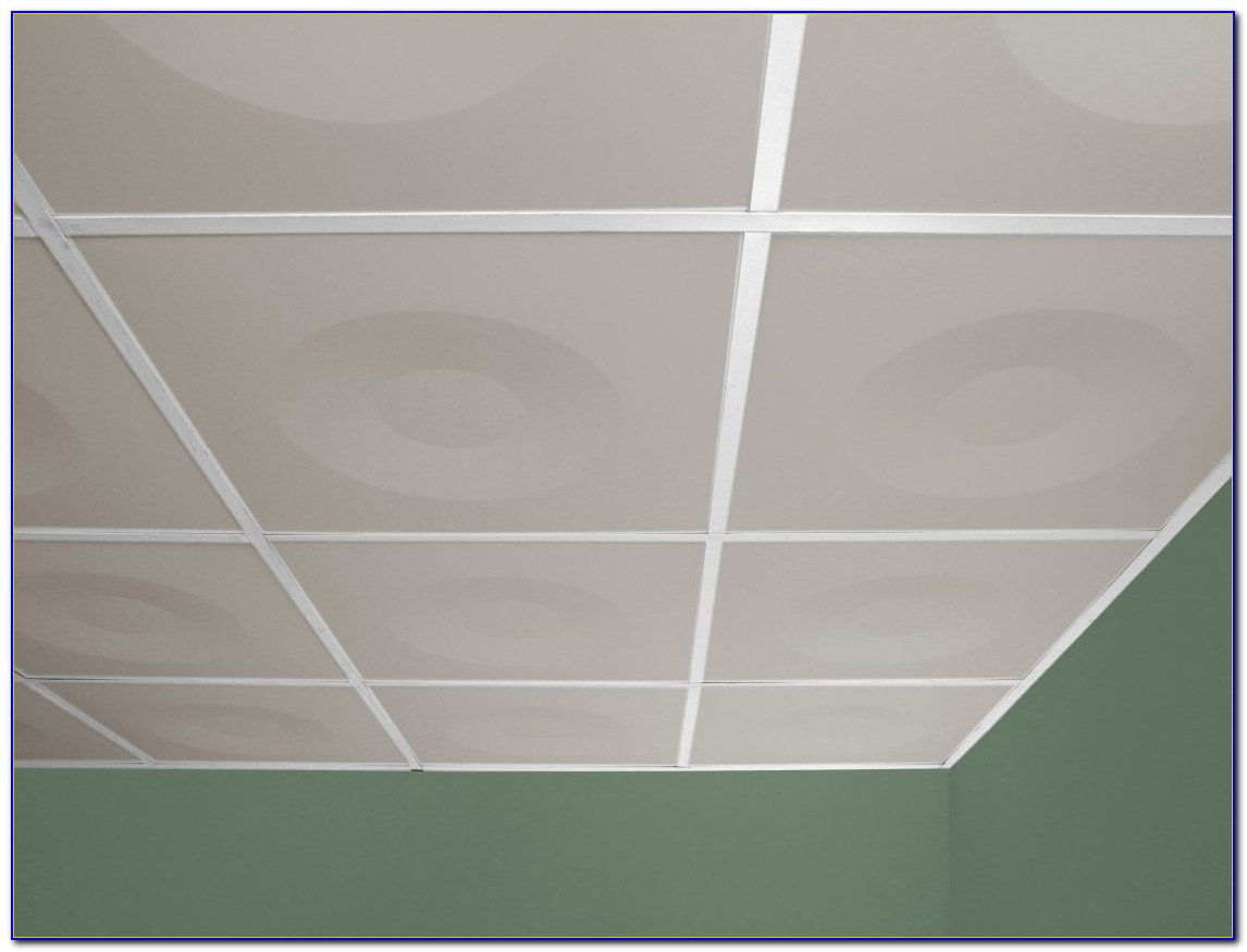 24 X 48 Decorative Ceiling Tiles