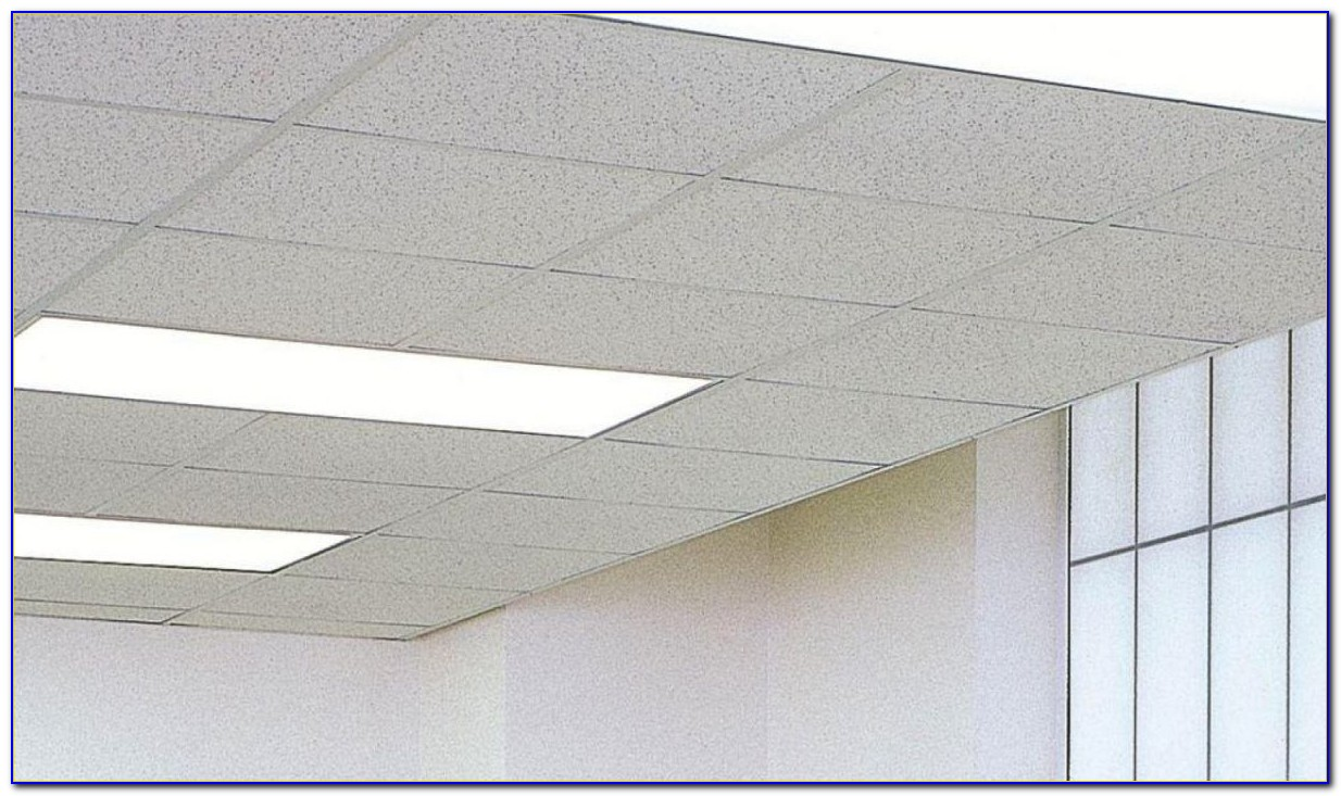 704 Acoustical Ceiling Tile