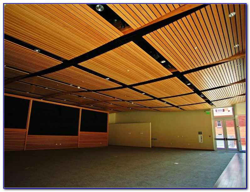 Armstrong Acoustic Ceiling Tile Installation