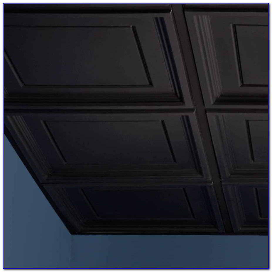 Armstrong Commercial Ceiling Tile Black