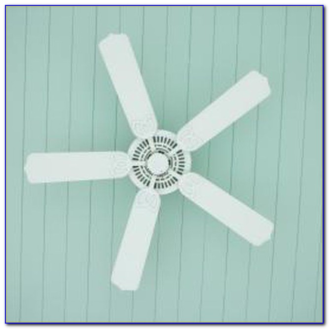 Ceiling Fan Blade Covers Palm