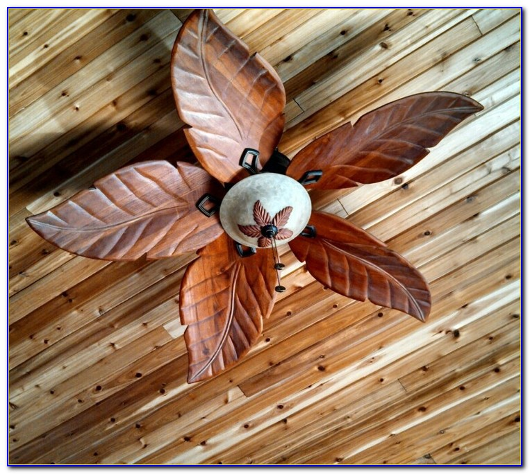Ceiling Fan With Blades Enclosed