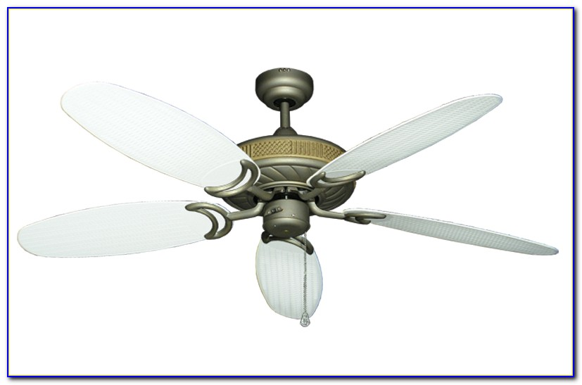 Ceiling Fan With Rattan Blades