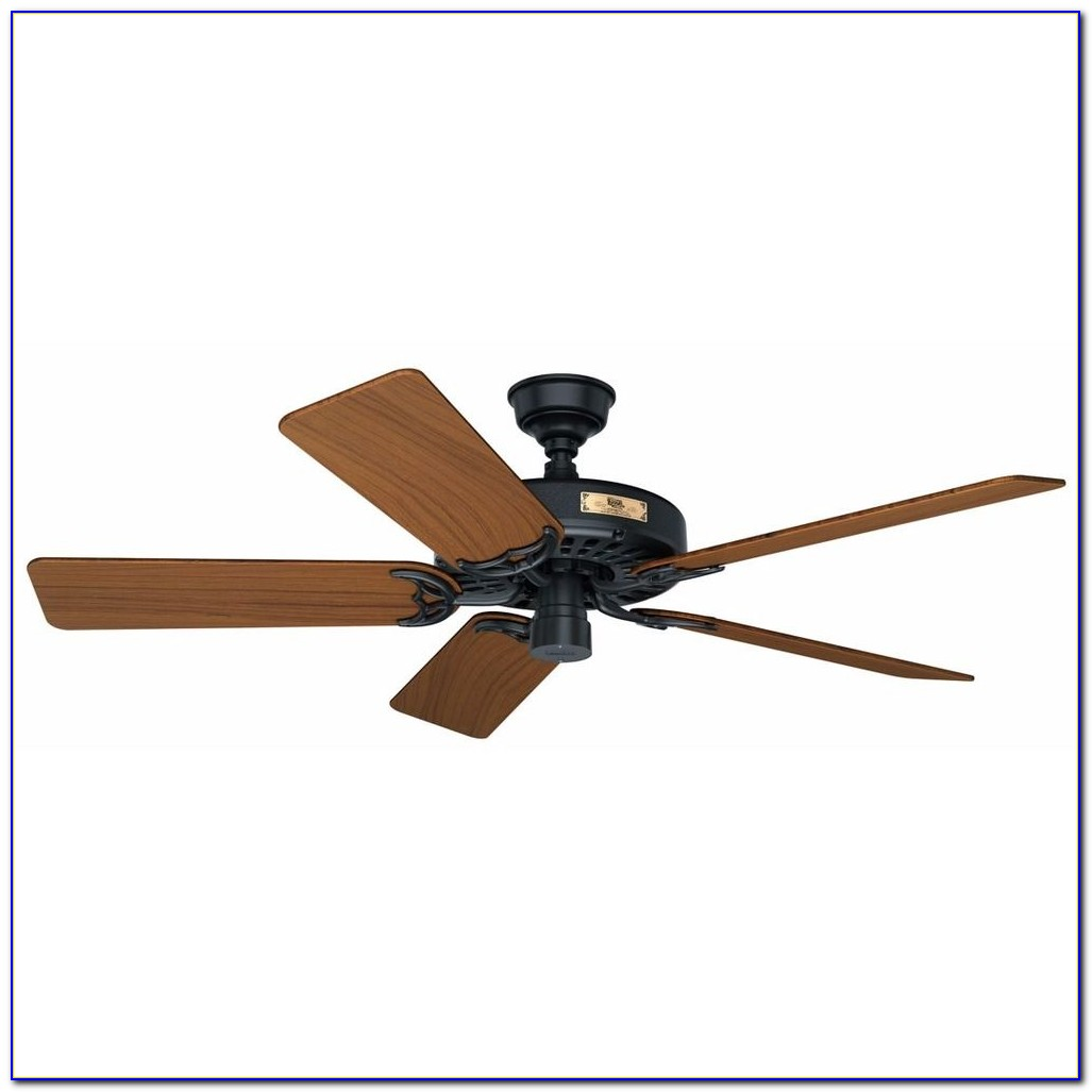Ceiling Fan With Real Wood Blades