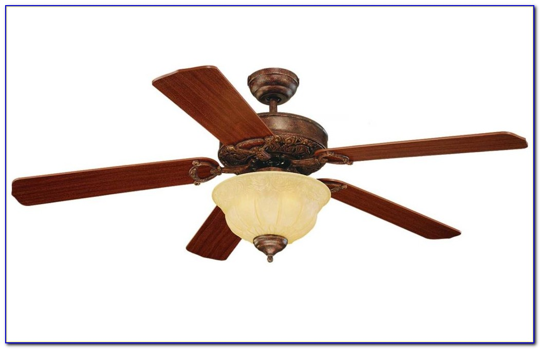 Ceiling Fans Dual Heads
