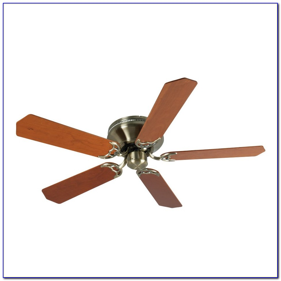 Ceiling Fans With Wooden Leaf Blades