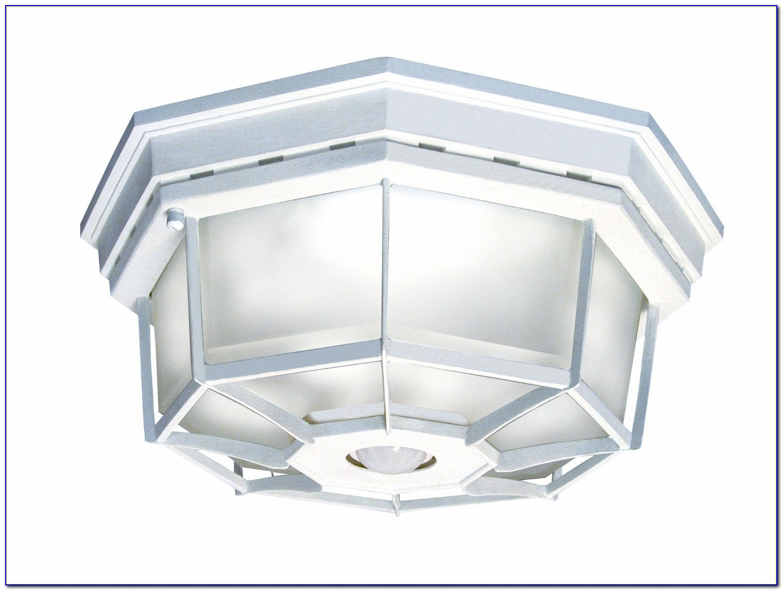 Ceiling Mount Motion Sensor Light Fixture