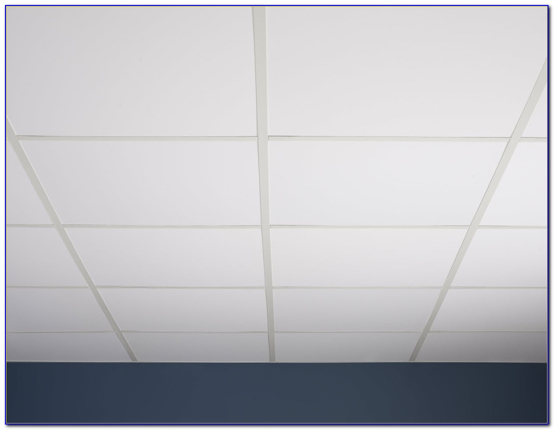 Commercial Kitchen Drop Ceiling Tiles