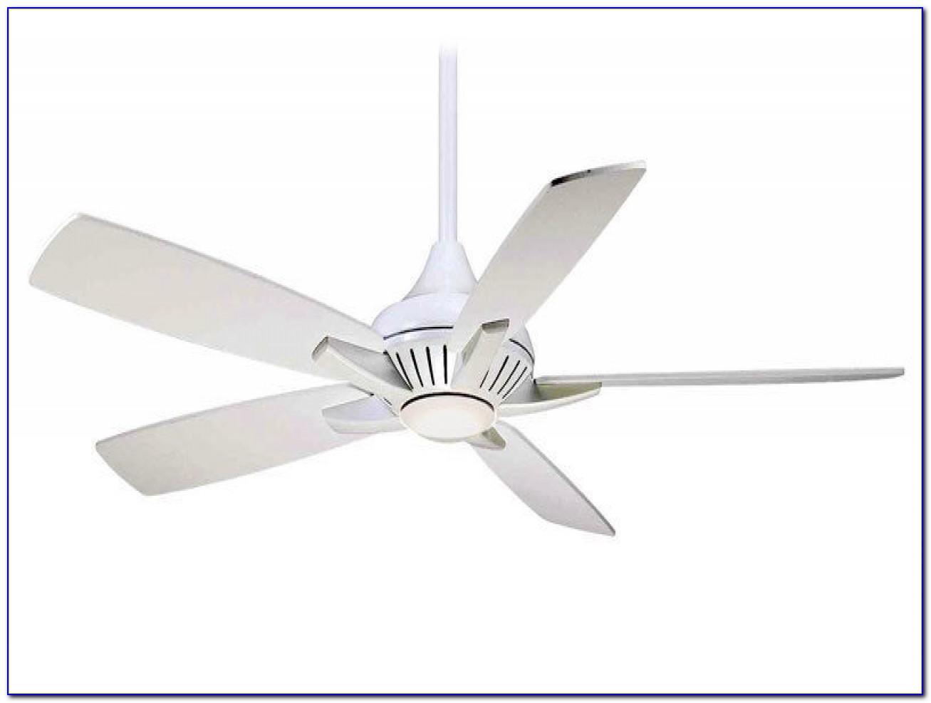 Energy Efficient Ceiling Fan Light Bulbs