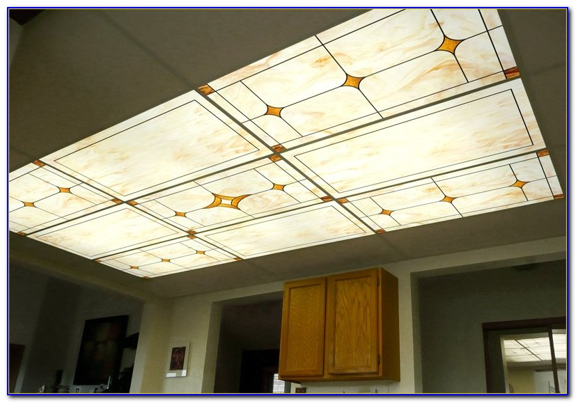 Fluorescent Ceiling Light Panels