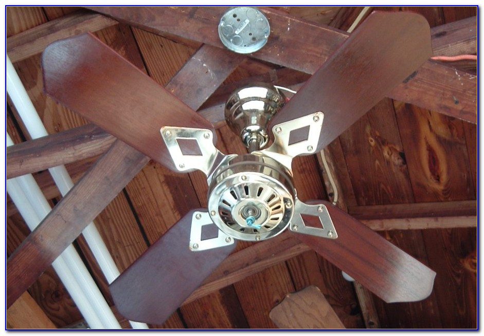How Do Variable Speed Ceiling Fans Work