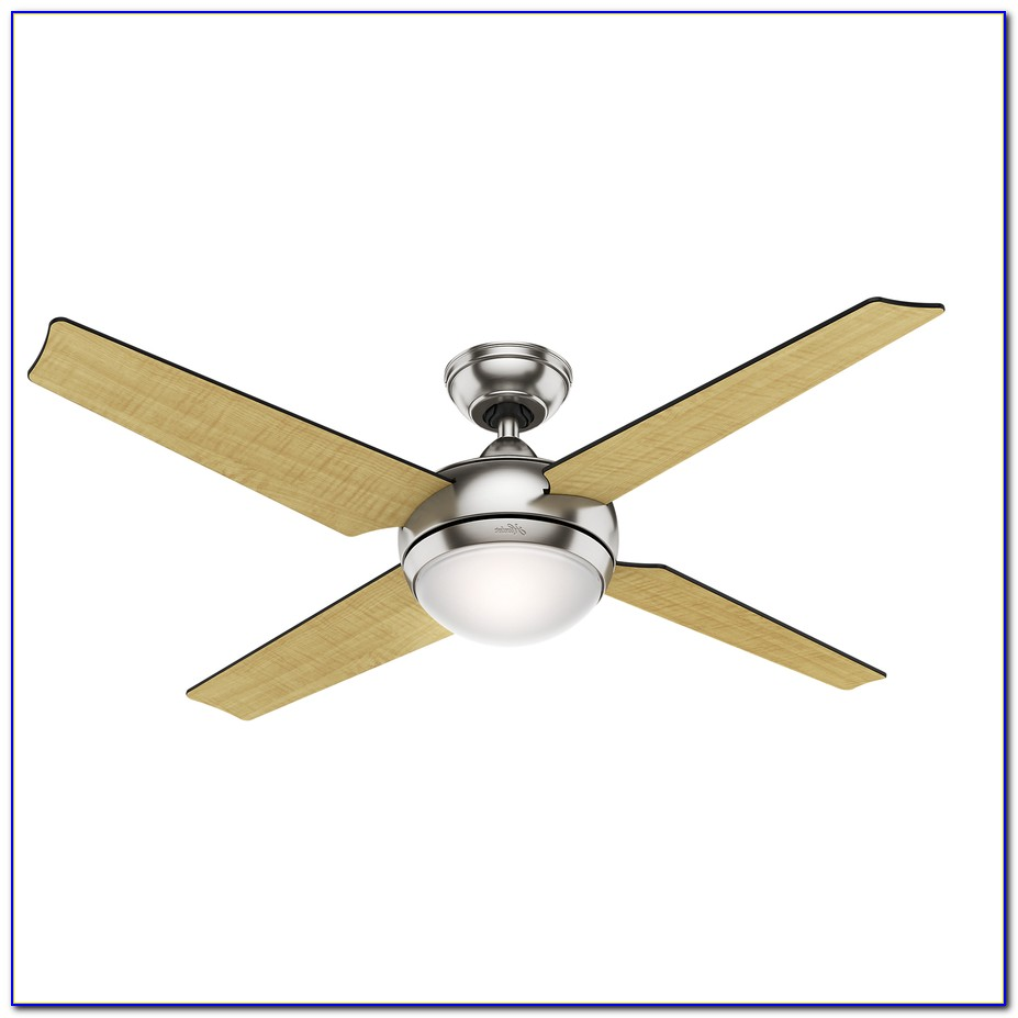 Hunter Brushed Nickel Ceiling Fan With Light
