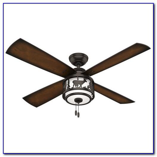 Hunter Ceiling Fan Light Kit Menards