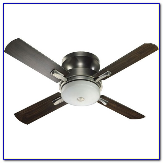 Hunter Hugger Ceiling Fans With Remote