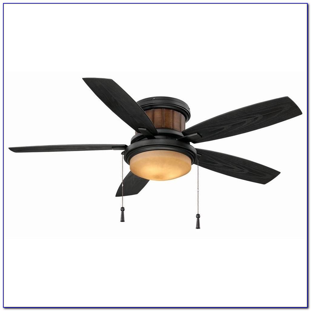 Light Globes For Hunter Ceiling Fans