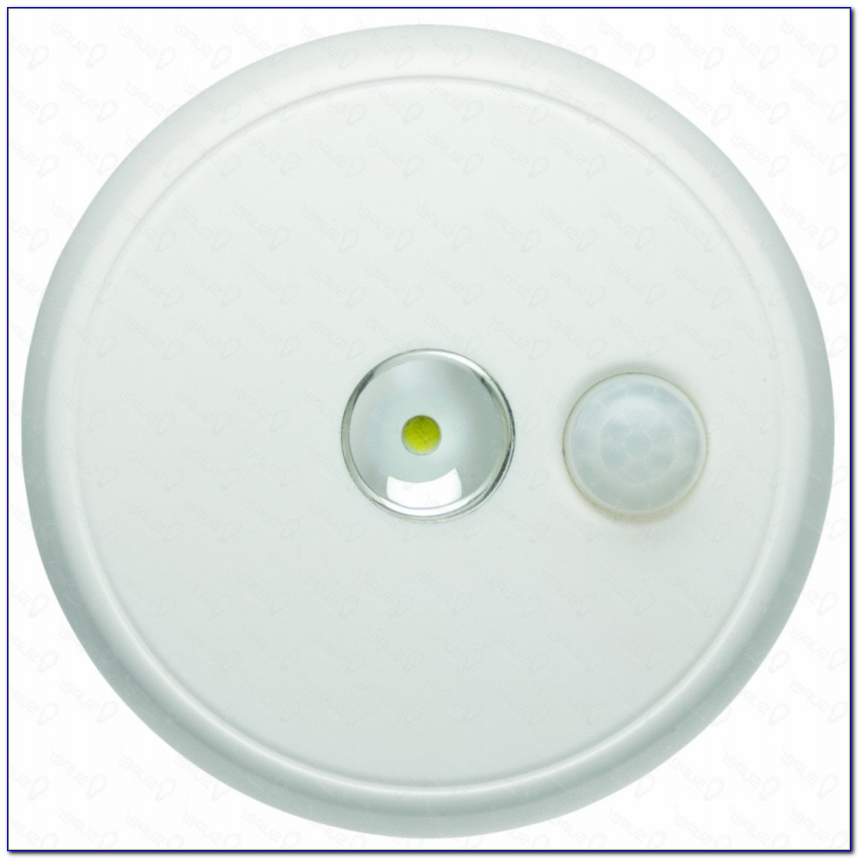 Motion Activated Indoor Ceiling Light Fixture