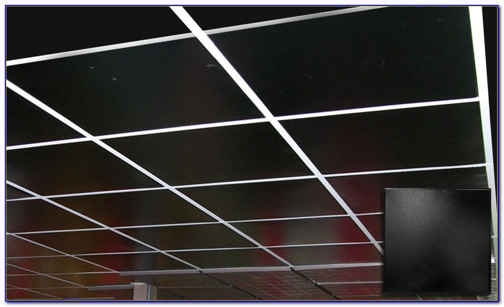 Painting Acoustic Ceiling Tiles Black