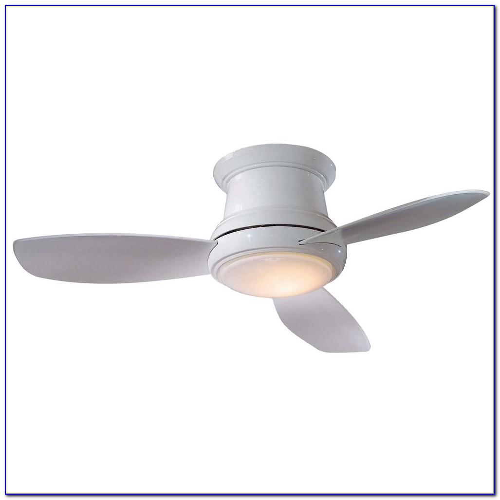 Petite Ceiling Fan With Light