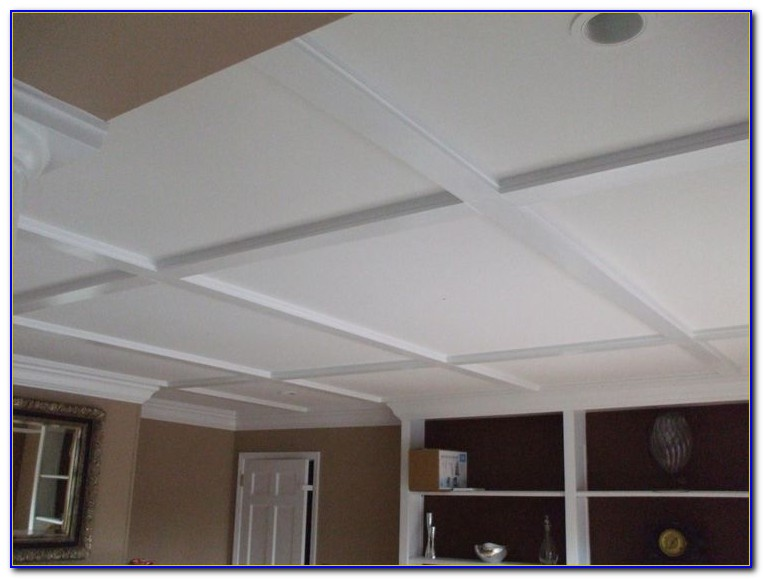 Pictures Of Different Types Of Drop Ceilings