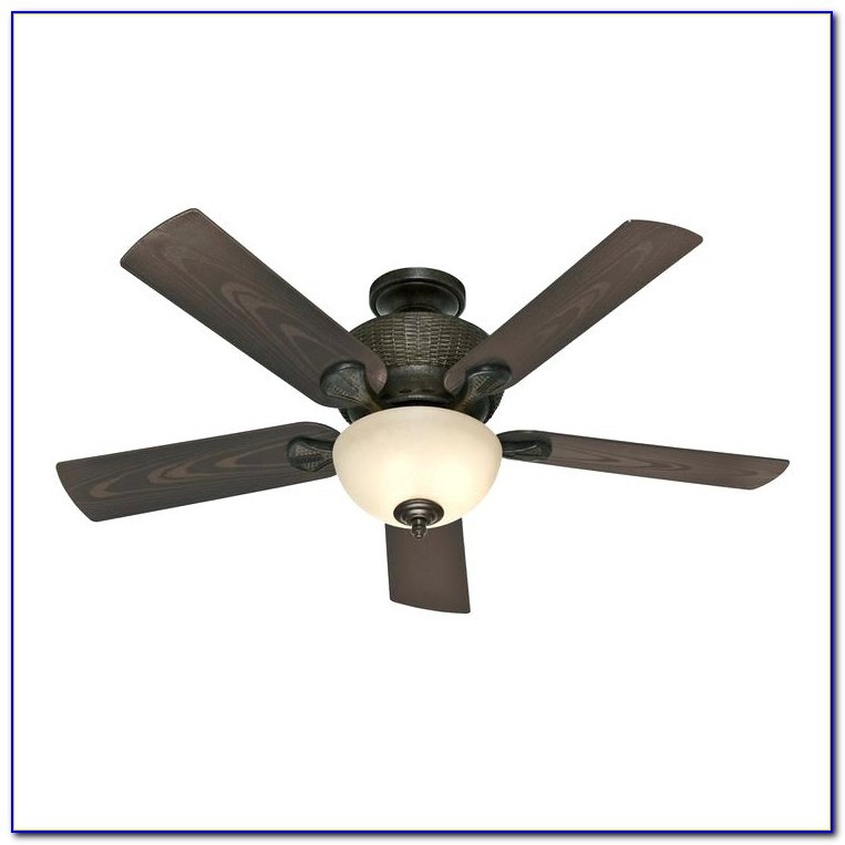 Plug In Ceiling Fans With Light