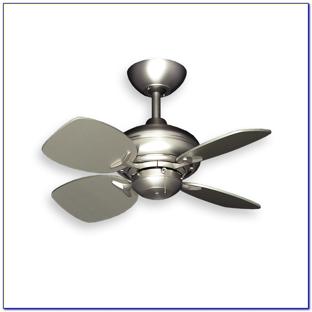 Short Blade Ceiling Fan With Light