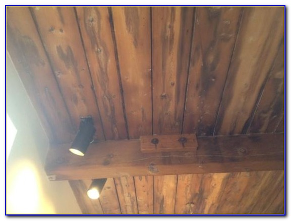 Water Damaged Ceiling Mold
