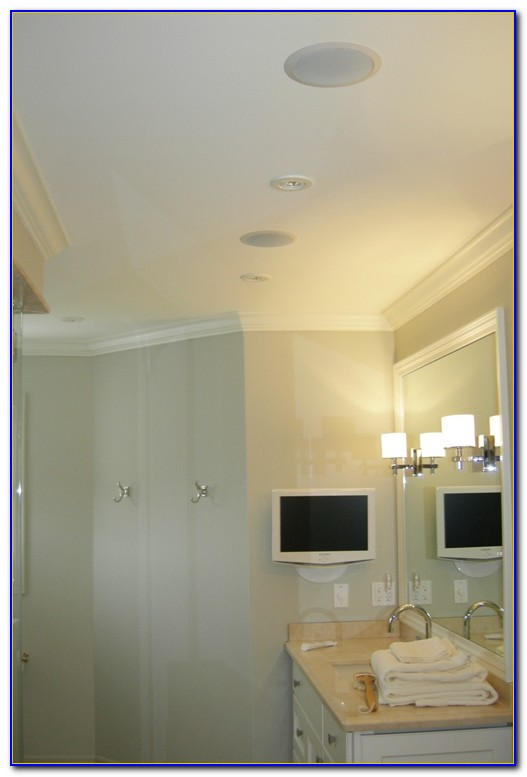 Waterproof Ceiling Speakers For Bathroom