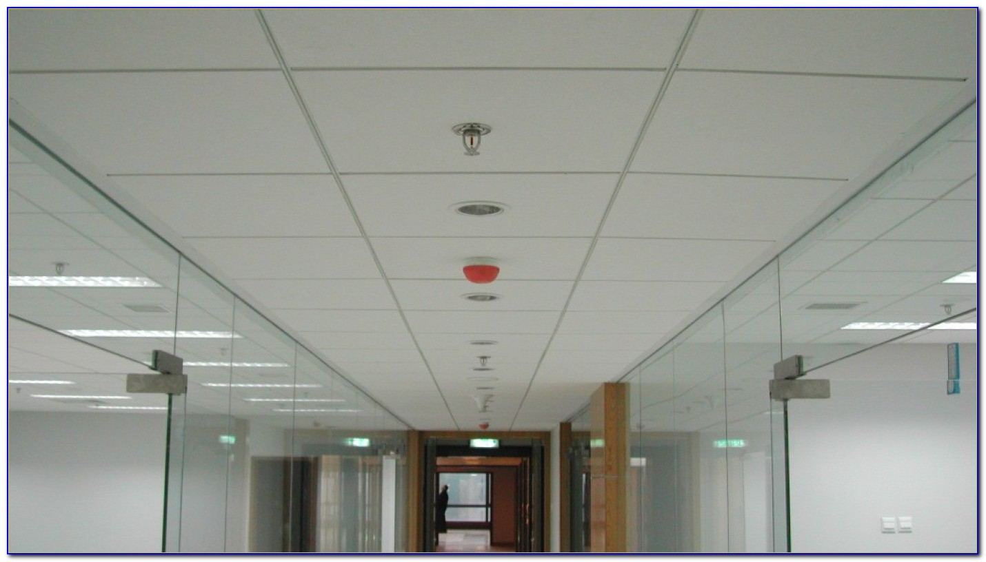 2 Hour Fire Resistant Ceiling