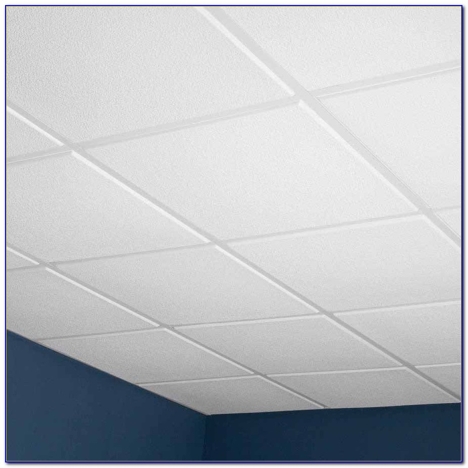 2 X2 Ceiling Tiles