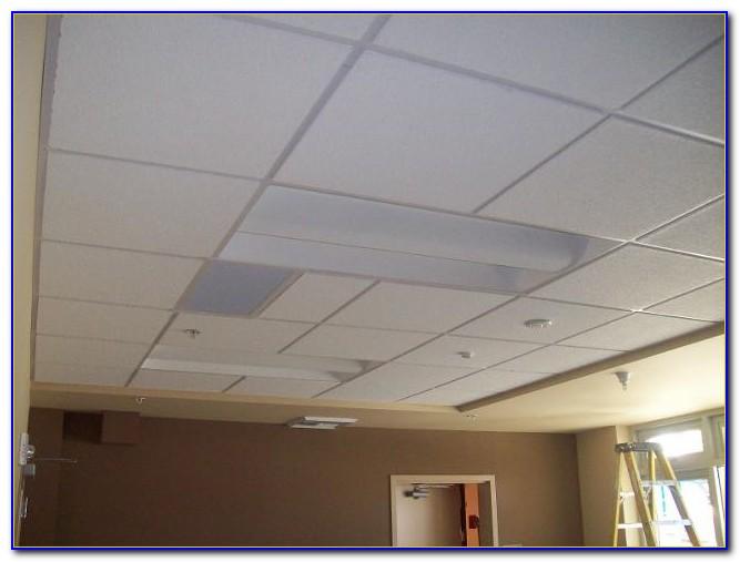 2x4 Acoustical Ceiling Tiles