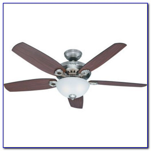 Amazon Hunter Outdoor Ceiling Fans