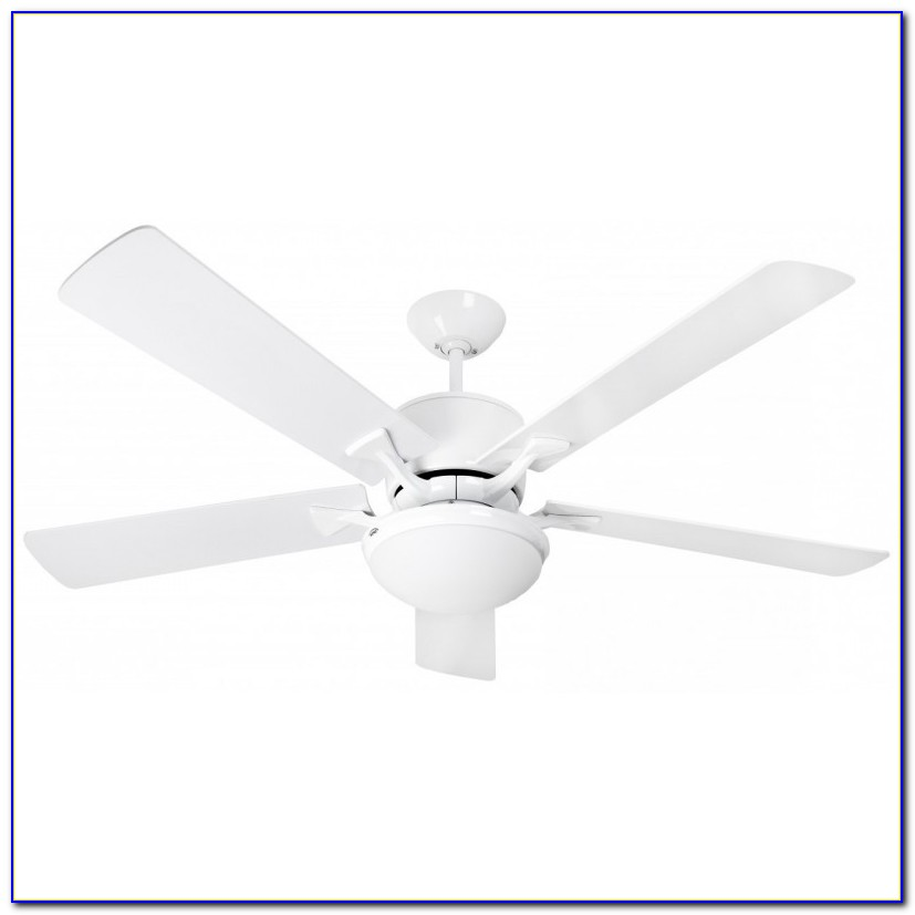 Ceiling Fan Light With Remote
