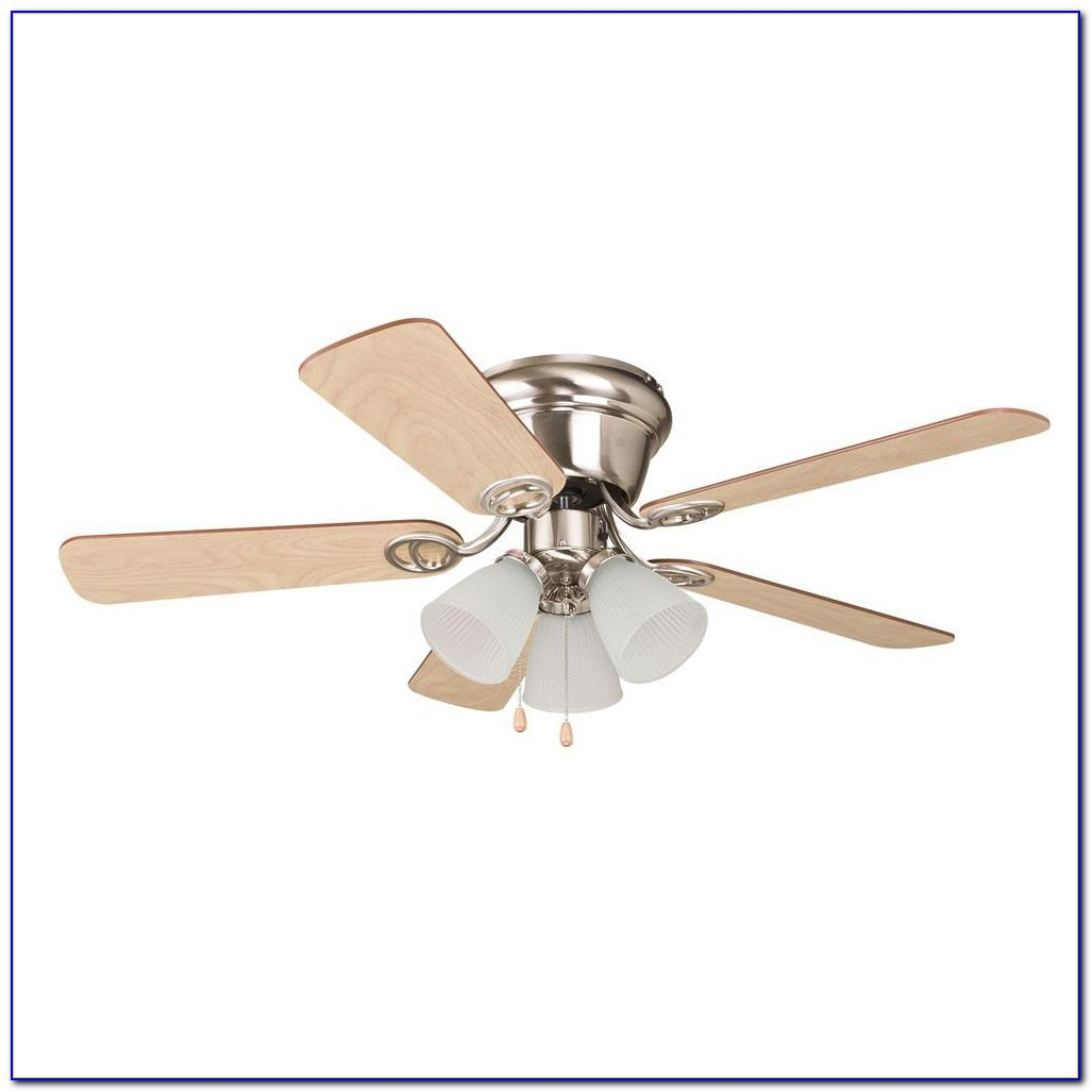 Ceiling Fans With Clear Plastic Blades