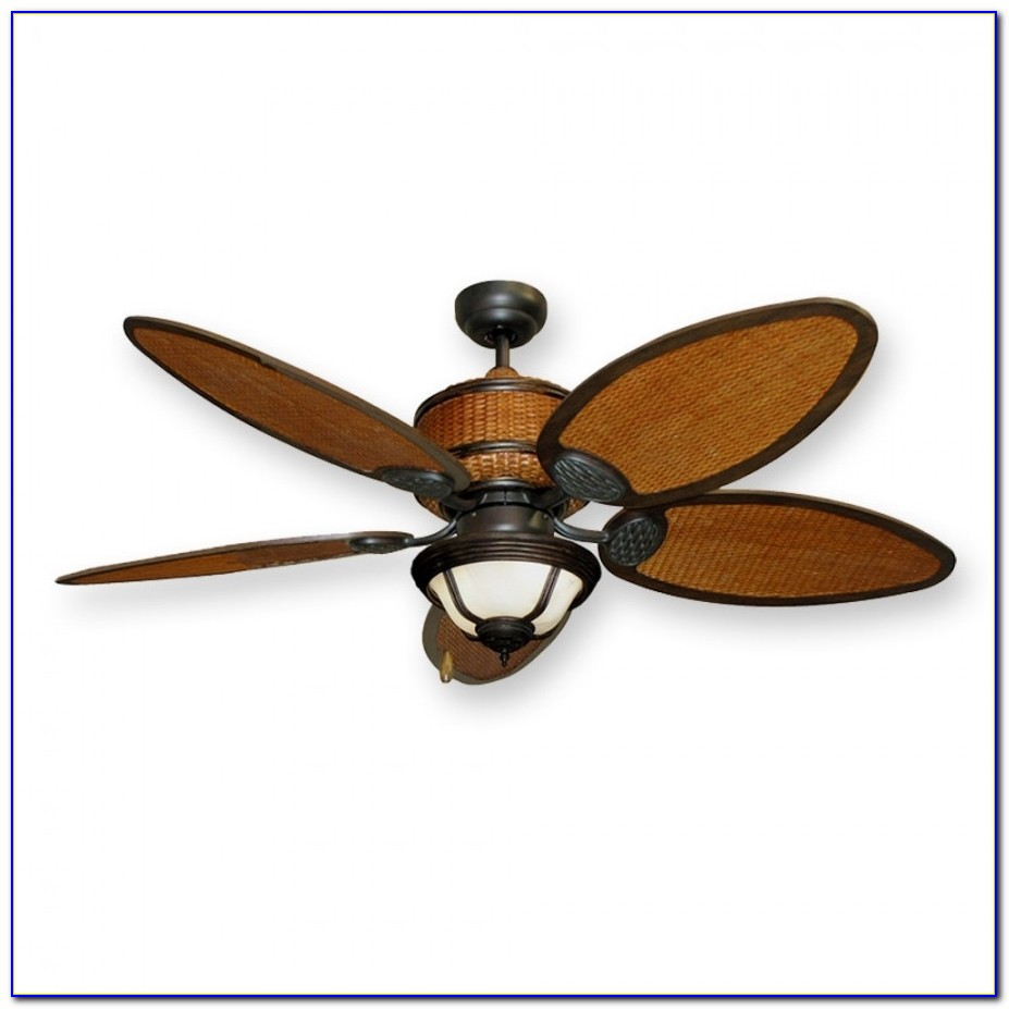 Dual Rotational Ceiling Fan With Light