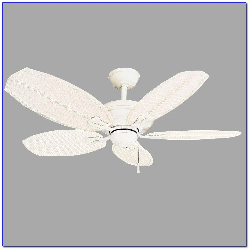 Hampton Bay Palm Beach 48 Ceiling Fan