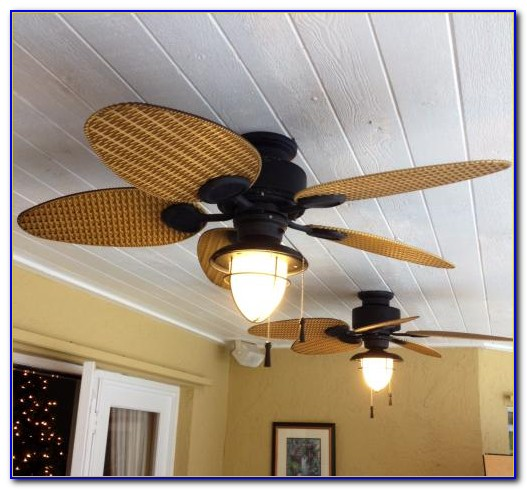 Hampton Bay Palm Beach Ceiling Fan Light Kit