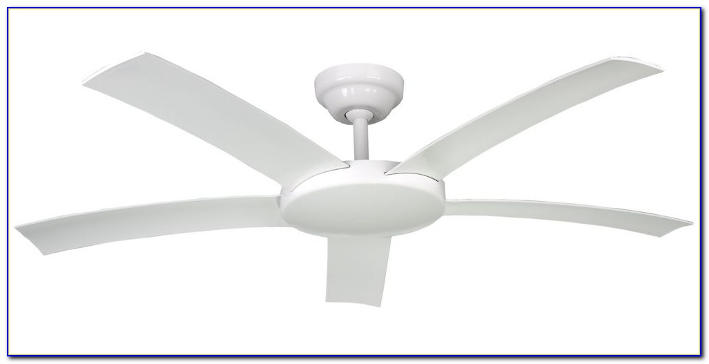 Hunter Brand Ceiling Fans