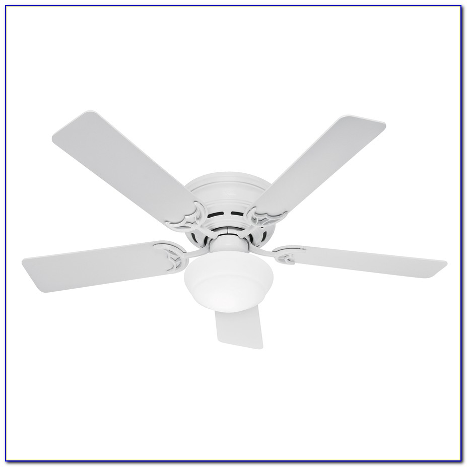 Hunter Flush Mount Ceiling Fans White