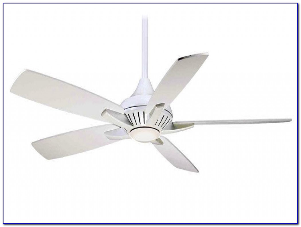 Hunter Pacific Ceiling Fan With Light And Remote