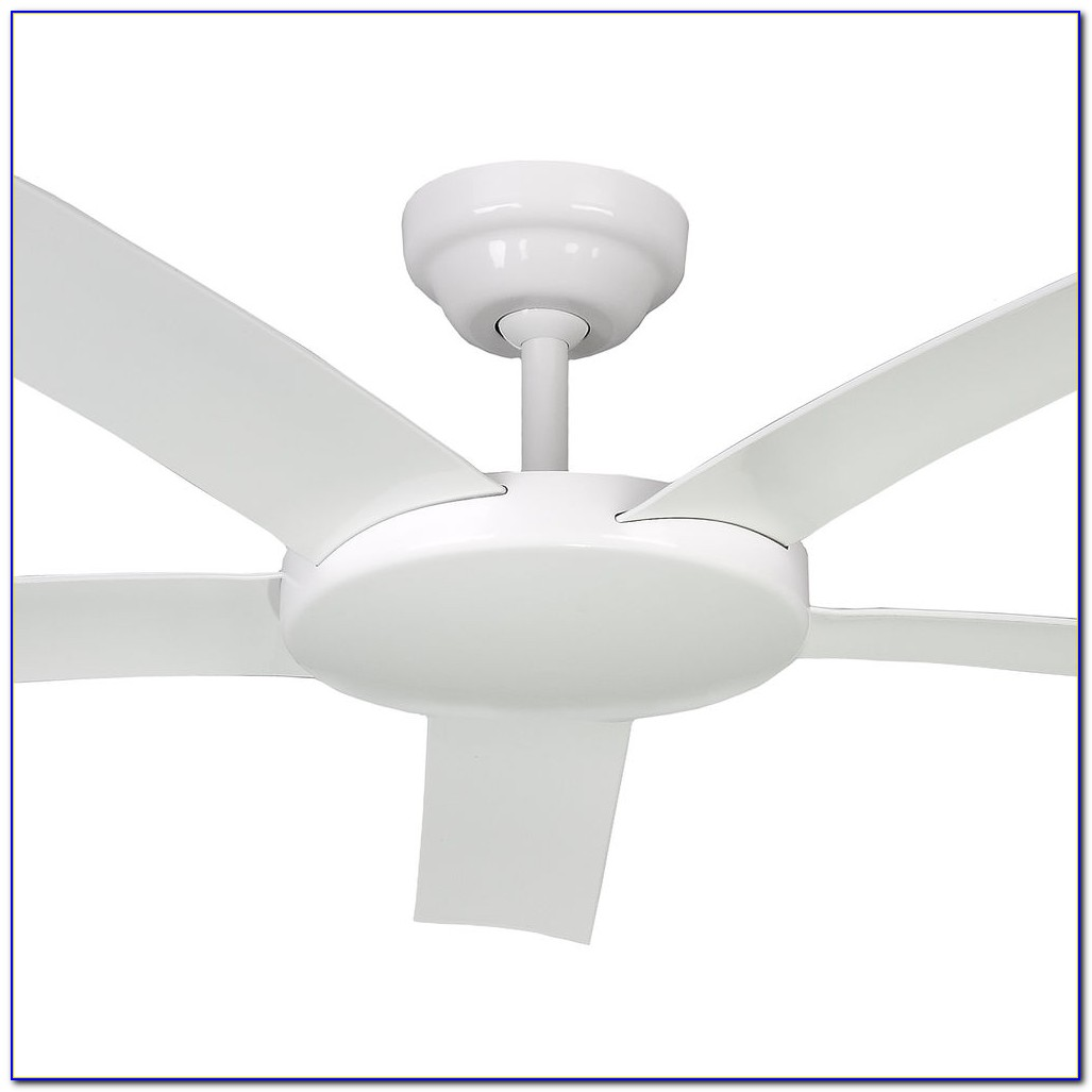 Hunter White Ceiling Fan No Light