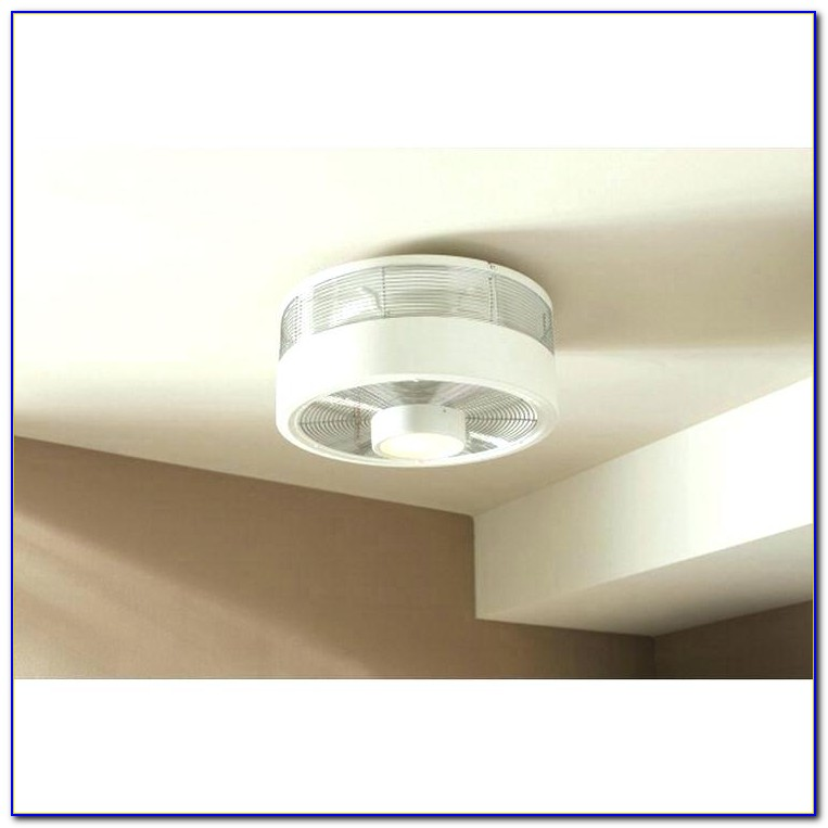 Outdoor Wall Mount Ceiling Fans