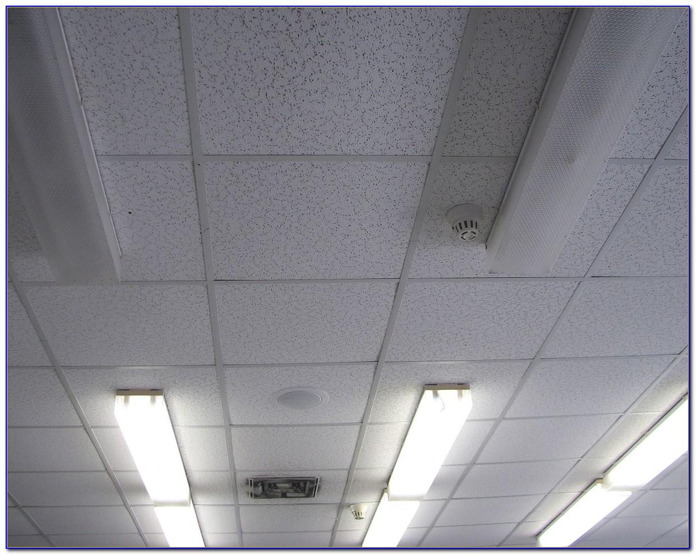 Rockfon Moisture Resistant Ceiling Tiles